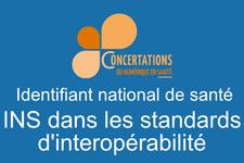 Logo_INS_Standard-interop.png